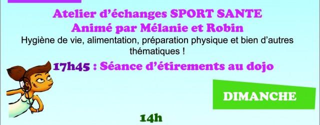 Le comité Drôme Ardèche de badminton, attaché au développement durable, met en place plusieurs conférences sur cette thématique à l'occasion des France Vétérans organisés sur le territoire. En partenariat avec […]