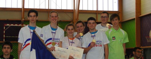 Le lycée polyvalent du Dauphiné de Romans champion de France UNSS de badminton 2018 Du lundi 5 au mercredi 7 février, 7 élèves du LPO du Dauphiné, accompagnés par 2 […]